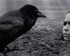 Nabarvené ptáče: chlapec putuje sadistickým světem, z něhož zmizel soucit [recenze filmu]