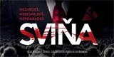 Sviňa: mrazivá reflexe, varovné memento i společenský apel před volbami na Slovensku [recenze filmu]